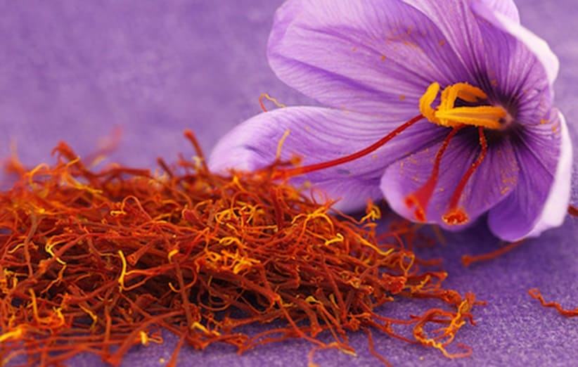 500 Grams Saffron